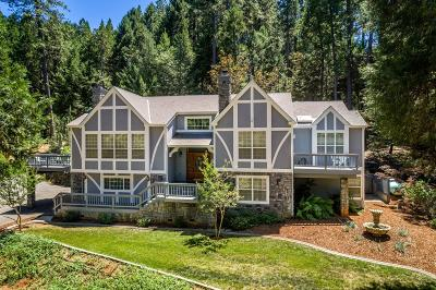 Nevada City Single Family Home For Sale: 12841 Big Blue Road