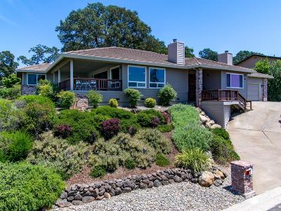 Single Family Home For Sale: 421 Powers Drive