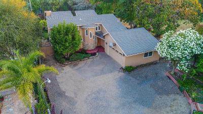 Orangevale Single Family Home For Sale: 8680 Central Avenue