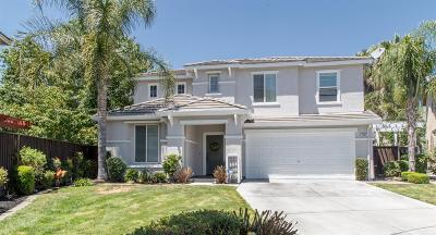 Tracy Single Family Home For Sale: 481 North Baldwin Court
