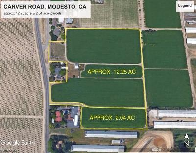 Modesto Commercial Lots & Land For Sale: 6248 Carver Road