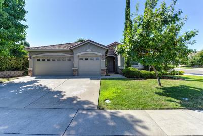 Folsom Single Family Home For Sale: 2191 Palomino Court