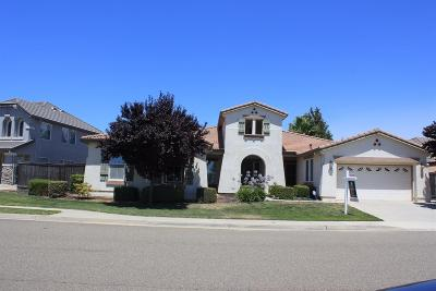 Elk Grove Single Family Home For Sale: 9623 Ridgerock Drive