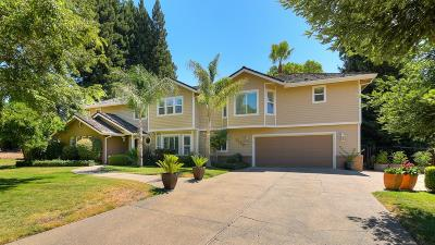 Orangevale Single Family Home For Sale: 8000 Indian Creek Drive