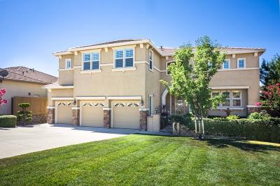 Folsom Single Family Home For Sale: 295 Fetter Court