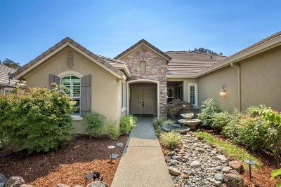 Auburn Single Family Home For Sale: 4841 Grey Fox Lane