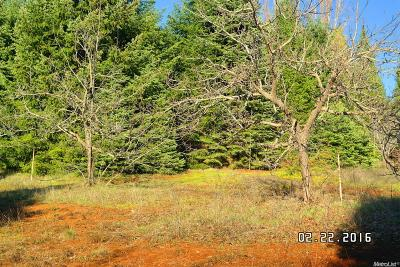 Camino Residential Lots & Land For Sale: 1995 Copperton Road