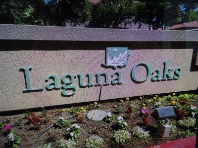 Elk Grove, Galt Condo For Sale: 5201 Laguna Oaks Drive