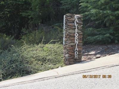 Sutter Creek Residential Lots & Land For Sale: 267 California Dr.