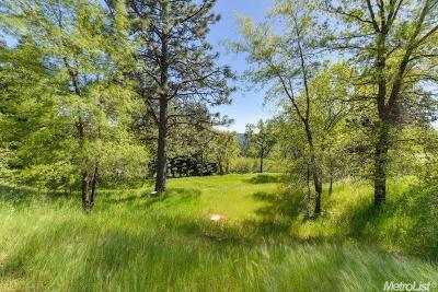 Camino Residential Lots & Land For Sale: Lot #26 Camino Hills Drive