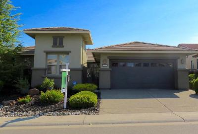 Single Family Home For Sale: 2526 Walden View Lane
