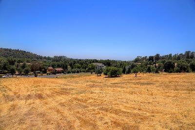 Loomis Residential Lots & Land For Sale: 8265 Autumn Glen Court
