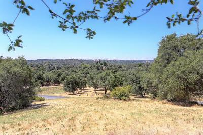 Loomis Residential Lots & Land For Sale: 3225 Rustic Woods Court