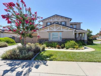 Orangevale Single Family Home For Sale: 9028 Pecor Way