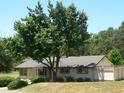 Loomis Single Family Home For Sale: 4400 Indian Creek Drive