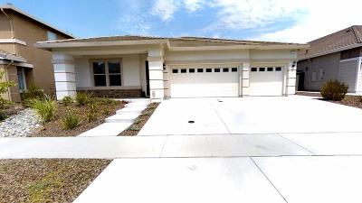 Roseville Single Family Home For Sale: 5113 Prairie Grass Way