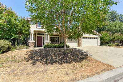 Rancho Murieta Single Family Home For Sale: 15337 Murieta South Parkway