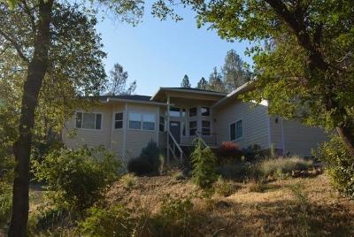 Grass Valley Single Family Home For Sale: 17075 Oscar Drive