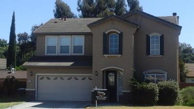 Manteca Single Family Home For Sale: 533 Appenzel Place