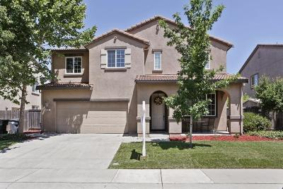Elk Grove Single Family Home For Sale: 8281 Keegan Way
