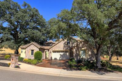 Folsom Single Family Home For Sale: 1509 Gionata Way