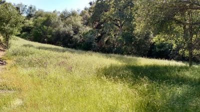 Placerville Residential Lots & Land For Sale: 2760 Stagecoach Road