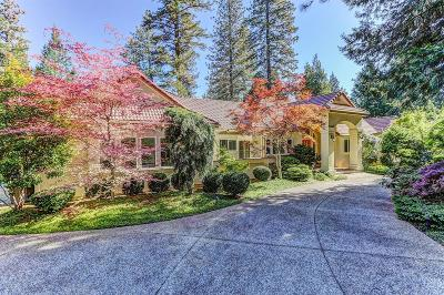 Grass Valley Single Family Home For Sale: 12861 Chatsworth Lane
