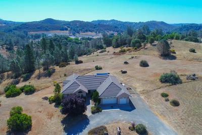 Placerville Single Family Home For Sale: 1441 Rio Tierra Ct