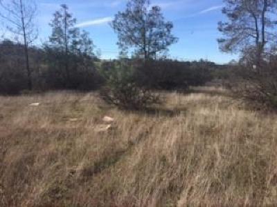 El Dorado Hills Residential Lots & Land For Sale: 2021 Green Valley Road