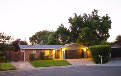 Folsom Single Family Home For Sale: 160 Perraud Court