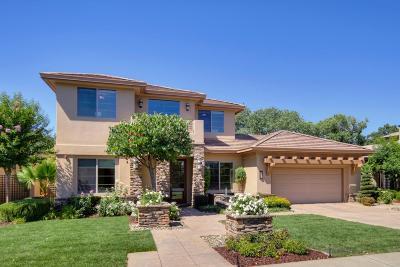 West Sacramento Single Family Home For Sale: 900 Rivercrest Drive