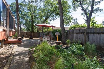 El Dorado Hills Single Family Home For Sale: 954 King John Way