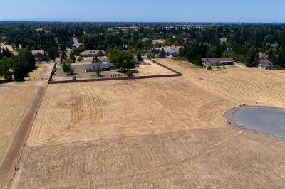 Elk Grove Residential Lots & Land For Sale: 10440 Halfway Court