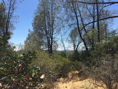 Nevada County Commercial Lots & Land For Sale: 13093 This Is It