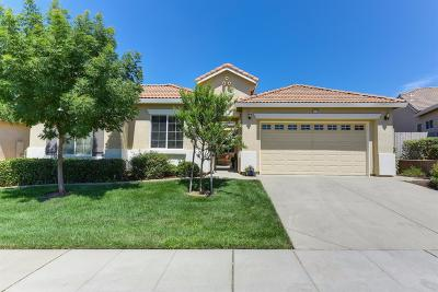 El Dorado Hills Single Family Home For Sale: 8728 Snow Fall Way