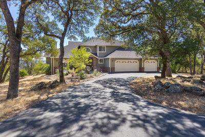 Placerville Single Family Home For Sale: 1991 Quartz Creek Lane