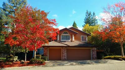 El Dorado Hills Single Family Home For Sale: 4069 Bancroft Drive