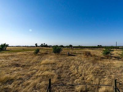 Yuba County Commercial Lots & Land For Sale: 4551 Dairy Road