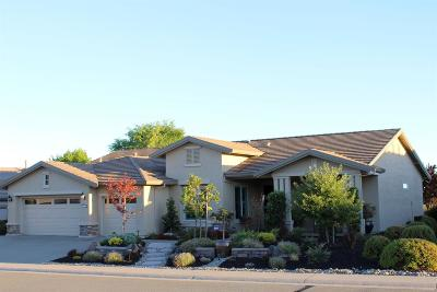 Single Family Home For Sale: 2120 Briarcliff Lane
