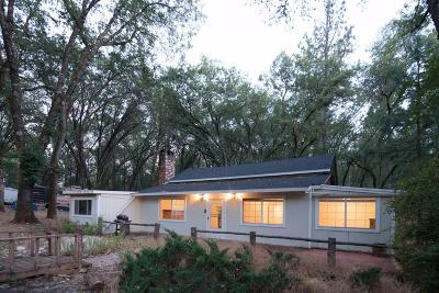 Meadow Vista Single Family Home For Sale: 1515 Meadow Vista Road