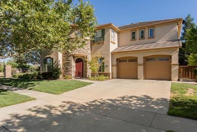 Roseville Single Family Home For Sale: 9155 Pinehurst Dr.