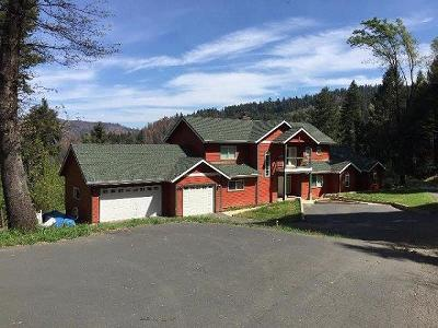 Pollock Pines Single Family Home For Sale: 2230 Randolph Canyon Road