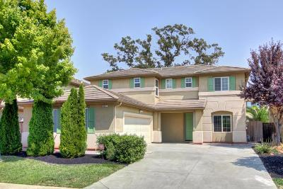 Elk Grove Single Family Home For Sale: 9247 Fife Ranch Way