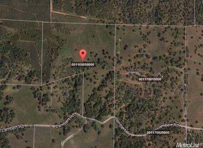 Amador County Commercial Lots & Land For Sale: 18645 Lambert Road