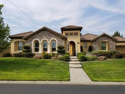 Roseville Single Family Home For Sale: 3663 Westchester Drive