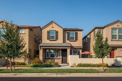 Roseville Single Family Home For Sale: 3121 Village Park Drive