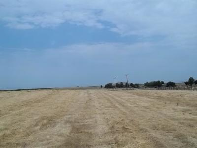 Escalon Residential Lots & Land For Sale: 8615 South Via Carano Place