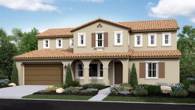 El Dorado Hills Single Family Home For Sale: 5312 Florentino Loop