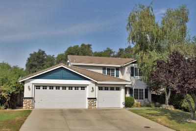 Cameron Park Single Family Home For Sale: 5016 Sagan Court