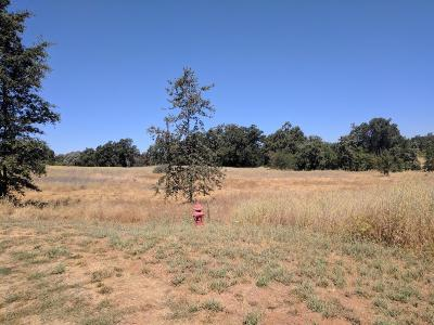 Residential Lots & Land For Sale: 2141 Ranch Creek Road
